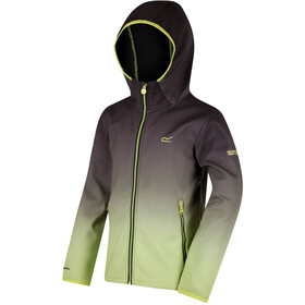 Regatta Anodize Softshell Jacket Kids Black/Lime Zest